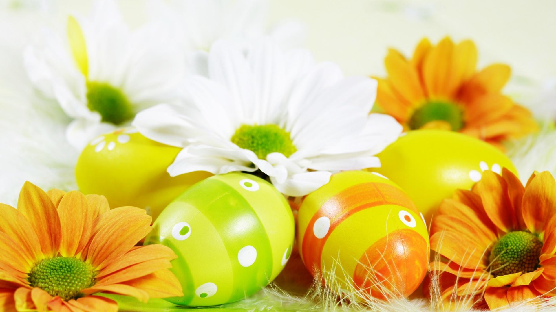 Fiori e piante per augurare buona pasqua consegna a for Fiori e piante online