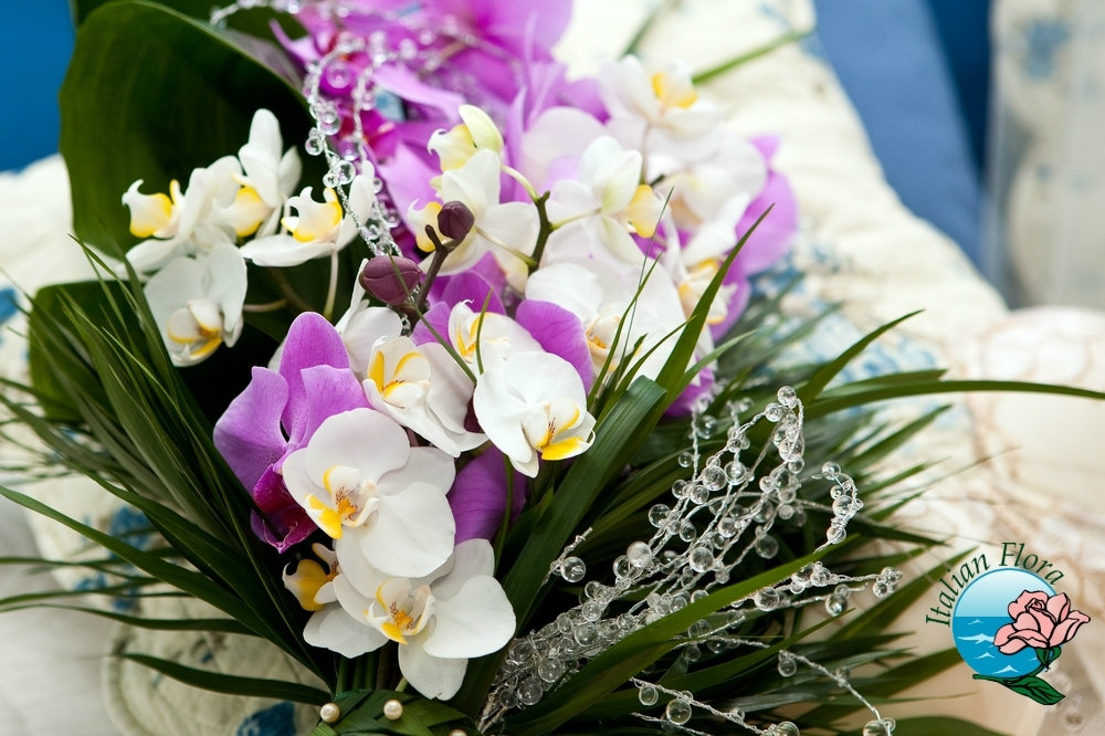 Le orchidee: regalare un pensiero simbolo di Amore e sensualità