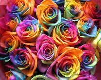 il colore dei Fiori: i suggerimenti sulla scelta del fiore