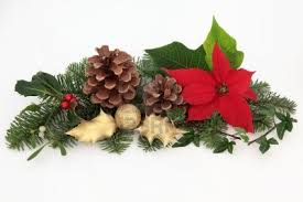 Fiori da regalare a Natale