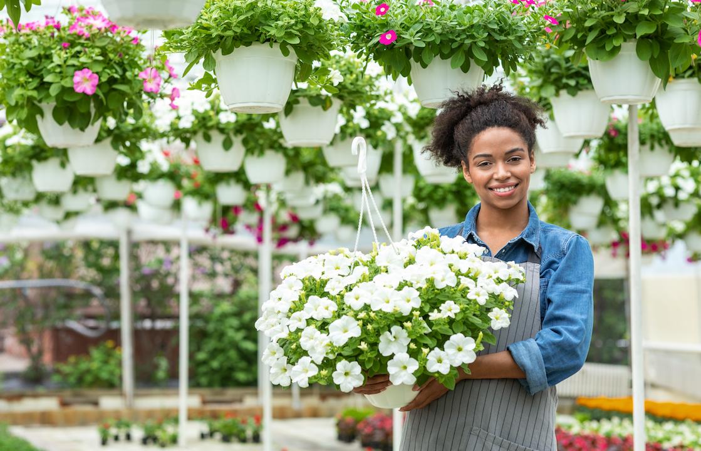 I tuoi fiori dove vuoi tu: ecco in quali città è attiva la consegna a domicilio